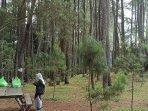 Menikmati Keindahan Taman Hutan Raya Ir H Juanda Bandung di Masa Pandemi, Ini Cara Reservasinya