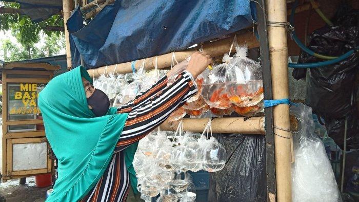 Imas sedang menata dagangannya di Pasar Ikan Hias Muara, Kota Bandung, belum lama ini