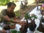 inding-taswan-bonsai-kelapa-1.jpg