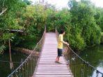 hutan-mangrove-angke.jpg