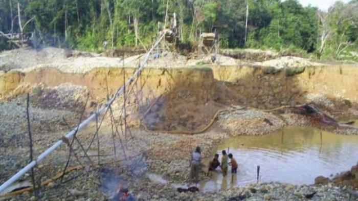 Kawasan Terdampak PETI di Provinsi Jambi Makin Mengkhawatirkan, Kini Capai 39 Ribu Hektare