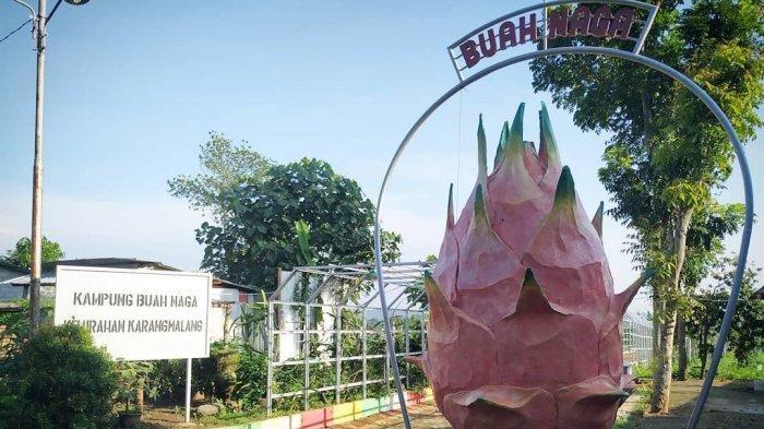 Inilah 17 Kampung Tematik di Kecamatan Mijen, Menyuguhkan Beragam Wisata Alam