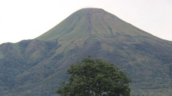 Gunung Arjuno (shuttertstock/ Muhamad Adi Purnomo)