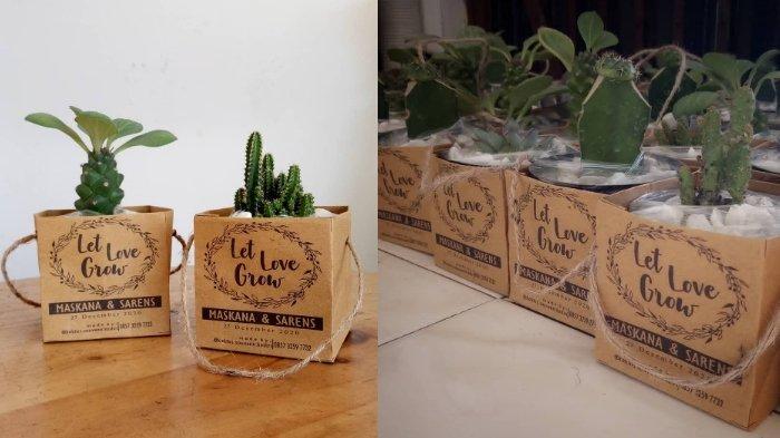 Souvenir kaktus yang dikemas menggunakan paperbag sablon. Cocok untuk dijadikan souvenir pernikahan ramah lingkungan.