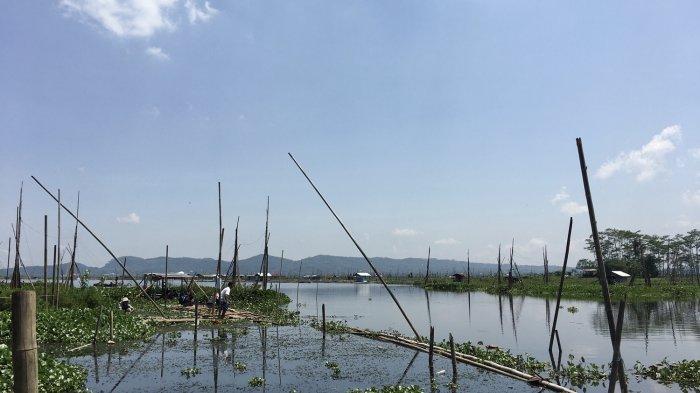 Rawa Pening, Spot Wisata Alam Menakjubkan di Salatiga