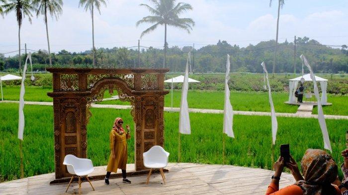 SvargaBumi, Suguhkan Pemandangan Sawah Berlatar Belakang Candi Borobudur yang Instagramable