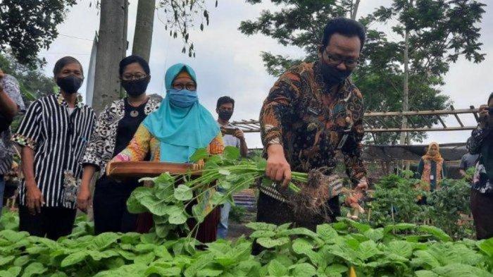 Lumbung Pangan Mataram untuk Wujudkan Ketahanan Pangan Mandiri