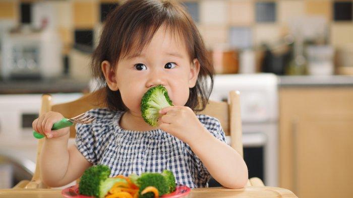 Bijak Menyajikan Makanan untuk Anak, Karena Mepengaruhi Perilakunya