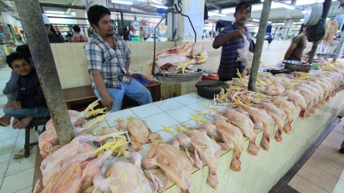Di Kukar, Harga Ayam Melambung, Rp 45 Ribu per Kilogram, Ini Penyebabnya