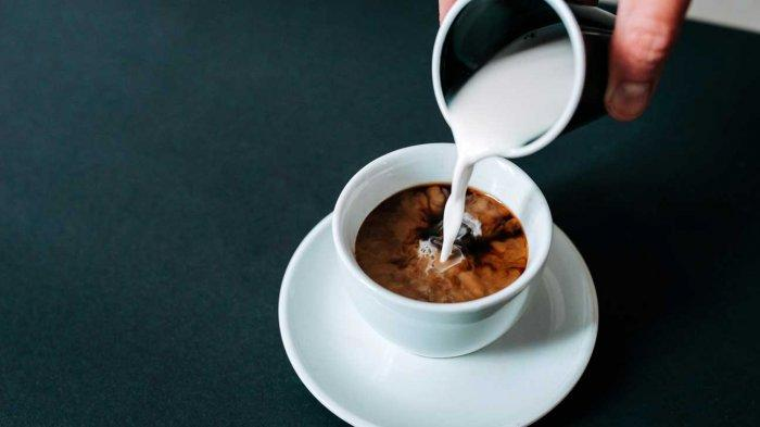 Menambahkan Krimer Pada Kopi Bisa Merusak Diet? Ini Faktanya