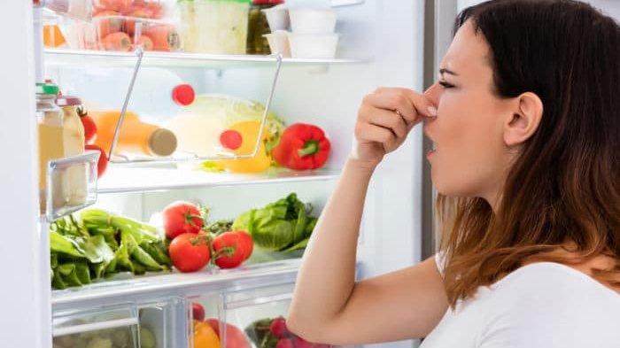 Kulkas Kotor dan Bau? Ikuti 4 Tips Mudah untuk Mengatasinya