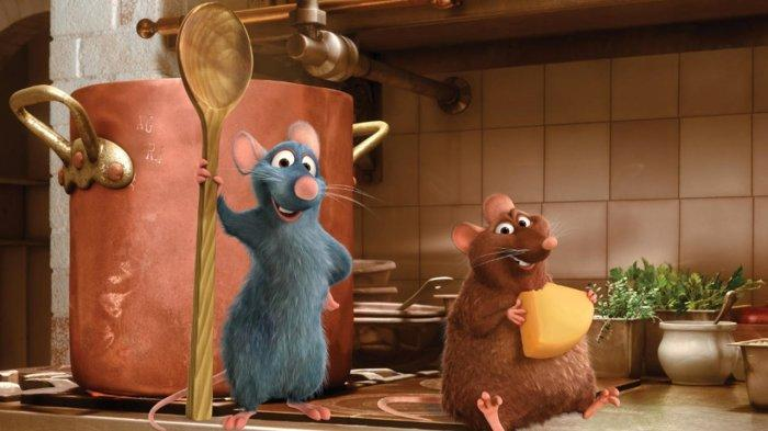 7 Penyebab Tikus Masuk ke Dalam Rumah