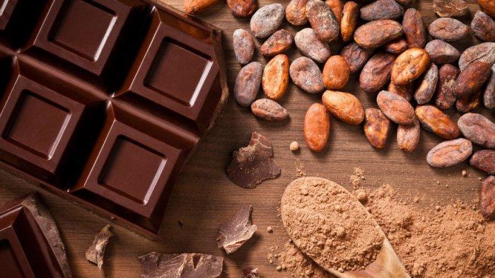Benarkah Makan Cokelat Membuat Otak Jadi Lebih Cerdas?