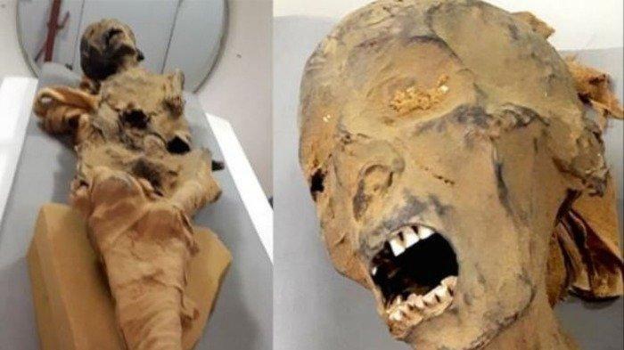 Aneh, Mumi Berusia 1.000 Tahun Ini Ditemukan dengan Perut Buncit & Penuh Belalang