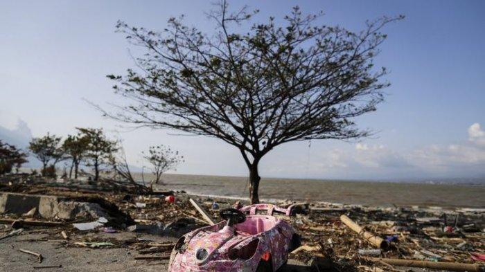 Peneliti: Gempa Bumi Tsunami Mentawai 2010 adalah Kejadian Langka