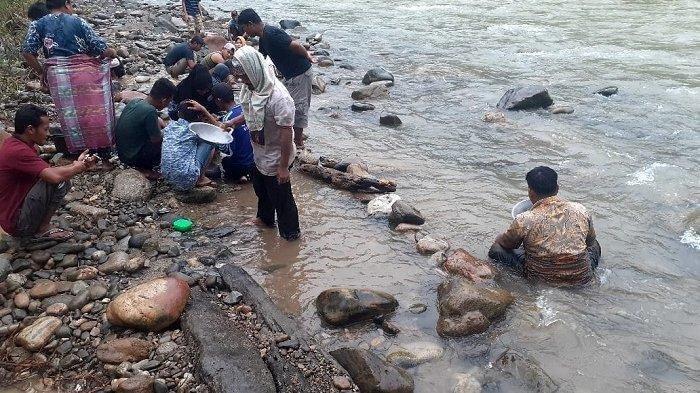 Tiba-tiba Muncul Banyak Butiran Emas di Sungai Aceh, Warga Berebutan