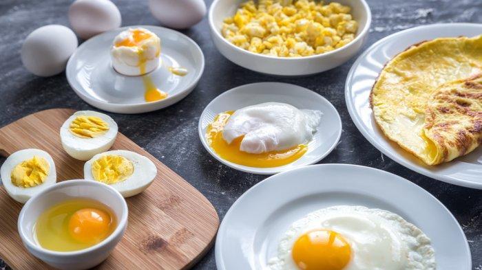 Olahan makanan dari telur