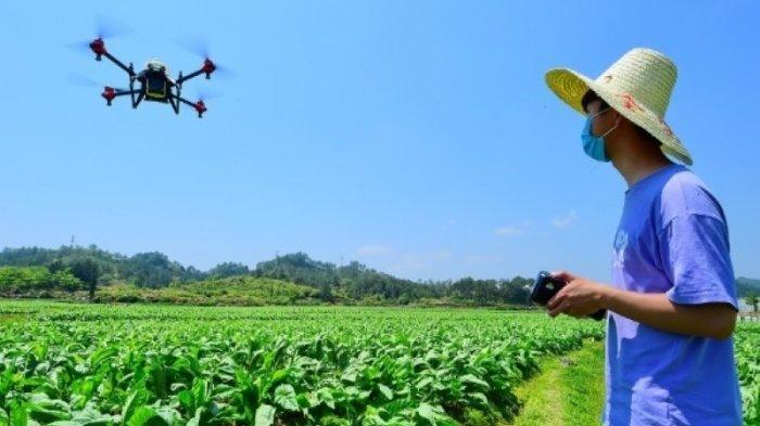 Pilot Pesawat Tanpa Awak Kini Jadi Profesi Baru Bidang Pertanian di China