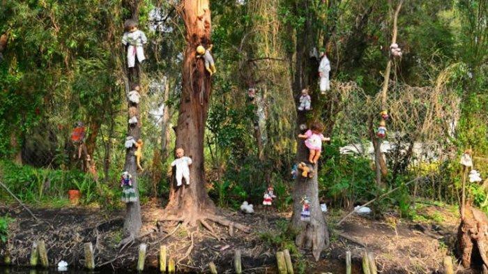 Pulau Tak Berpenghuni di Mexico yang Dipenuhi Boneka, Dari Mana Asalnya?