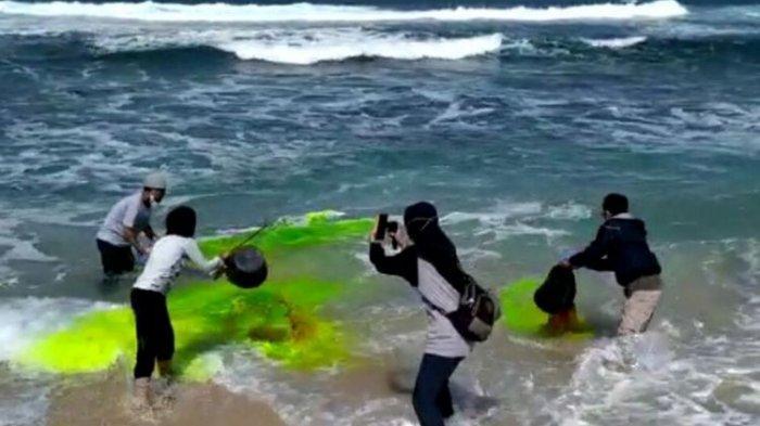 Rip Current, Penyebab Banyaknya Pengunjung Pantai Terseret Arus
