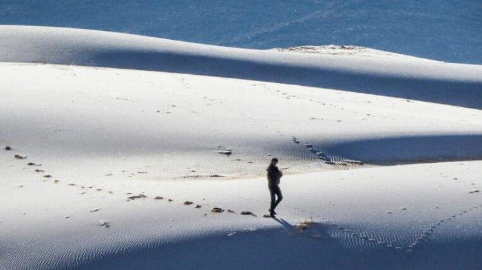 Fenomena Aneh, Gurun Sahara yang Panas dan Tandus Kini Diselimuti Salju