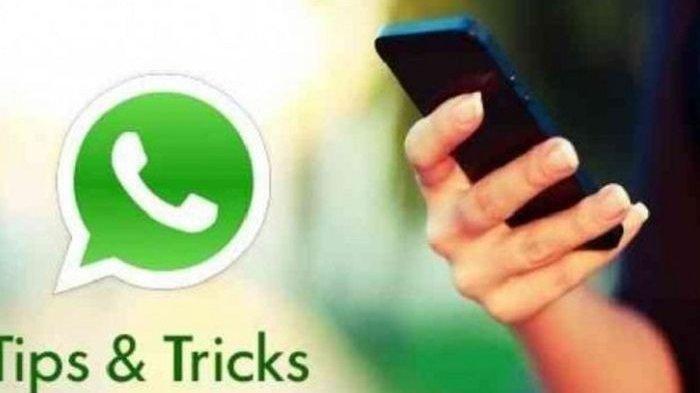 12 Tips dan Trik Fitur WhatsApp yang Bisa Kamu Gunakan