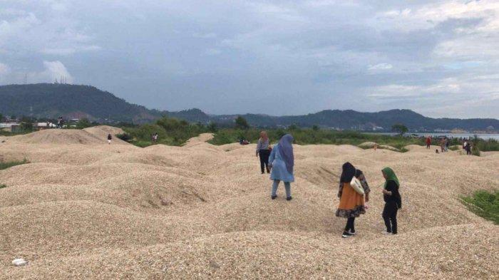 Gundukan pasir di Pantai Gunung Kunyit Bandar Lampung