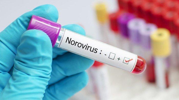 Kenali Norovirus, Virus Diare Di China