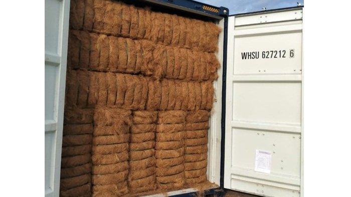 114,3 Ton Coconut Fiber/Serabut Kelapa Asal Sulawesi Tengah Tembus Pasar China