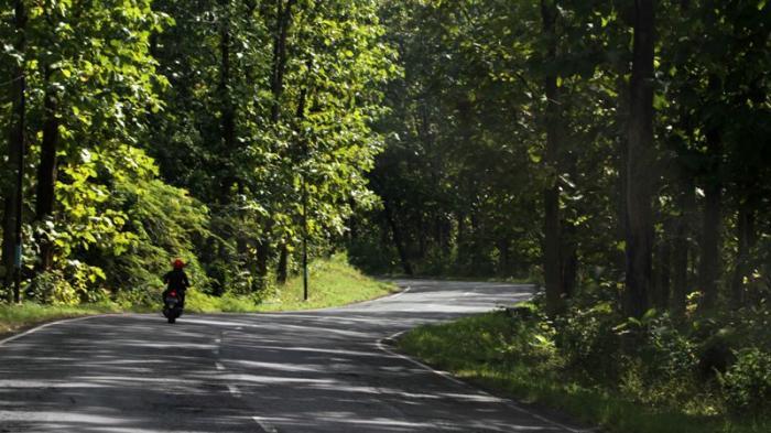Waspadai Jalan Berkelok dan Tanjakan di Situbondo - Banyuwangi