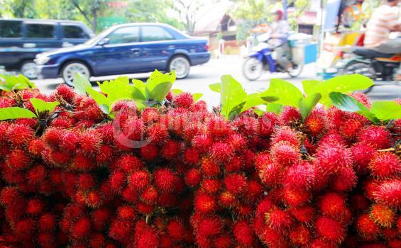 Buah rambutan dari Binjai seharga Rp 15 ribu per ikat dijajakan di Jalan Gajah Mada, Medan, Senin (8/8/2011). Rambutan yang rasanya manis dapat menjadi alternatif pelengkap puasa selain kurma dan pisang.