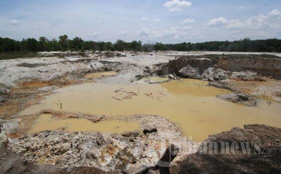 KLHK Tuntut PT Rambang Agro Jaya Bayar Ganti Rugi Pemulihan Lingkungan 137 Miliar Rupiah
