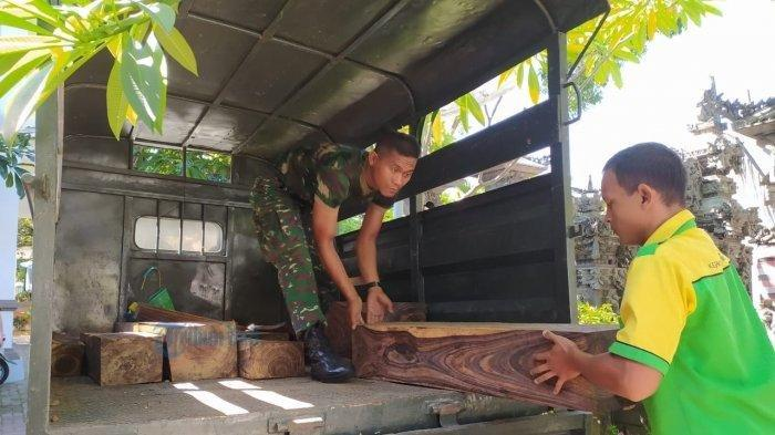 TNI Amankan 23 Balok Kayu Sonokeling, Diduga Dibekingi Oknum Aparat