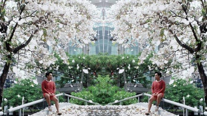 Selain Surabaya, Bunga Tabebuya ala Jepang di Indonesia juga Tumbuh di 5 Kota Ini