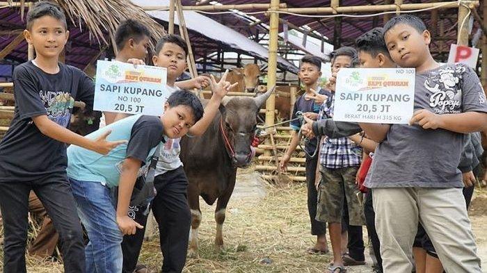 10 Bulan Menabung Rp 10 Ribu untuk Beli Sapi Kurban, 7 Anak di Bogor Ini Rela Tak Jajan