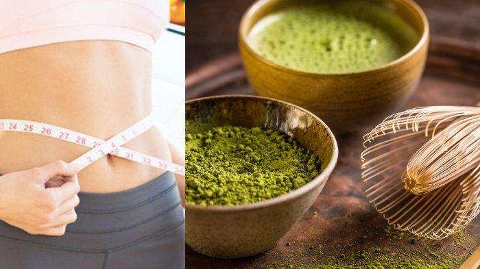Si hijau yang kaya akan manfaat teh matcha untuk kesehatan tubuh, membantu fungsi otak hingga menurunkan berat badan