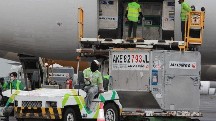 998.400 Dosis Vaksin Covid-19 AstraZeneca Bantuan Pemerintah Jepang Tiba di  Indonesia - Tribunnews.com Mobile