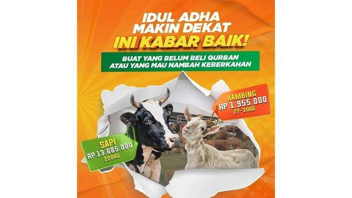 Promo Flash Sale! Kurban di Global Qurban Semakin Terjangkau