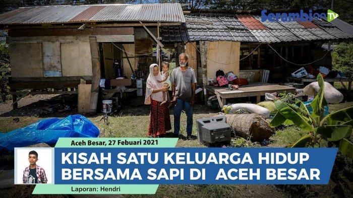 Ada Keluarga di Aceh Tak Memiliki KTP dan KK, Tinggal Seatap dengan Sapi, Ini Kisah Mereka