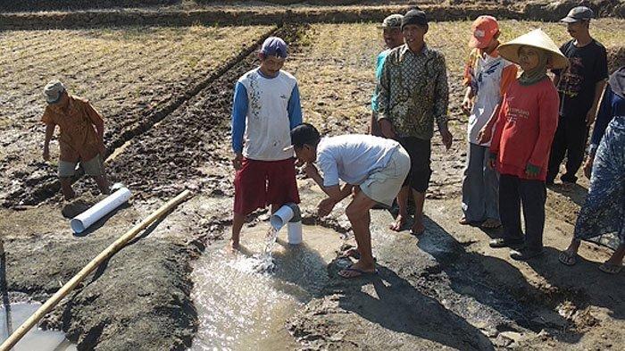 Warga saat berkumpul melihat sumur bor yang menyembur airnya, sebagian dari mereka mencicipi air dari sumur tersebut sebagian lainnya membasuh muka, kaki, dan tangan. Rabu (21/8/2019). Tribunjogja.com/Wisang Seto