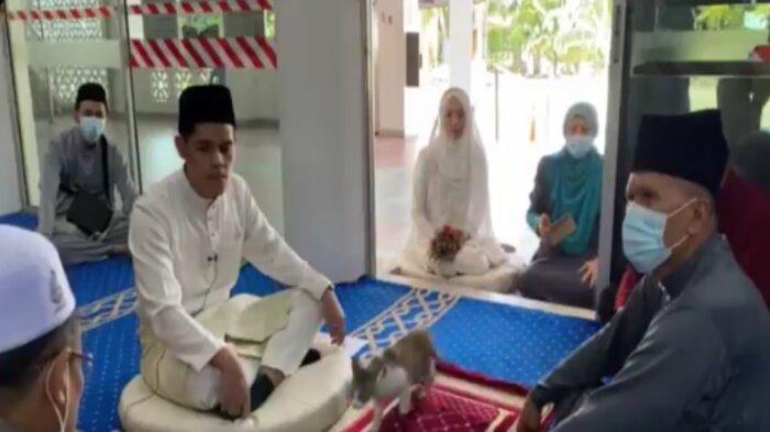 VIRAL Video Kucing Muncul di Tengah Prosesi Akad Nikah, Terjadi di Malaysia, Begini Cerita Pengantin