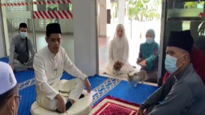 Video kucing muncul di tengah prosesi akad nikah, menjadi viral di media sosial.