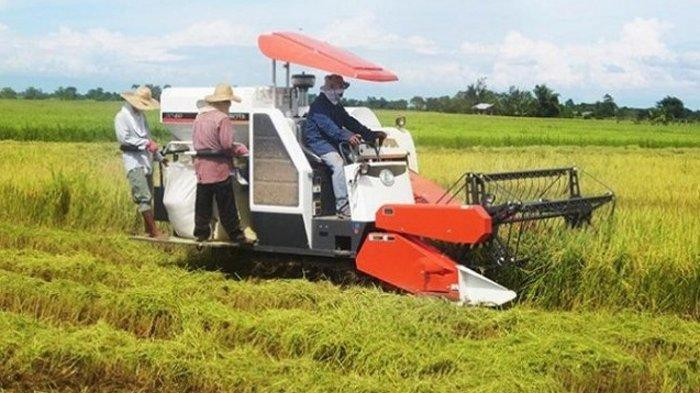 Kementan Beri Bantuan Prasarana dan Sarana Pertanian Bangka Selatan