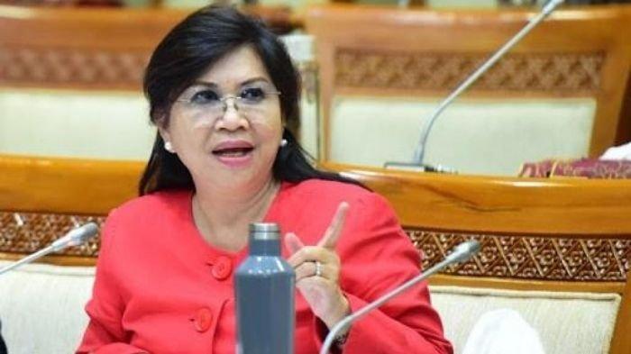 Komisi VI Sarankan BUMN Pariwisata Tidak Masuk ke 'Holding' Aviasi