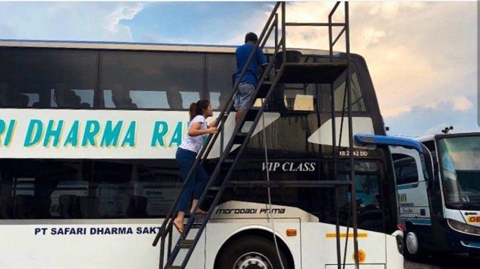 PO Safari Dharma Raya Tetap Berangkatkan Armada Selama Periode Larangan Mudik 2021