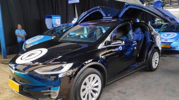 Banderol Tesla Rp 2 5 M Bluebird Pertimbangkan Cari Mobil Listrik Merk Lain Tribunnews Com Mobile