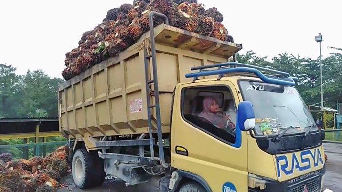 Ayu Eka Pramestari saat bekerja jadi sopir truk