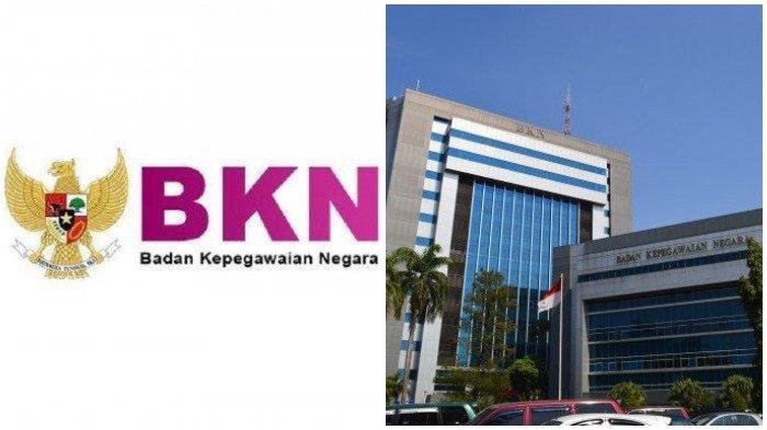 BKN Perpanjang Seluruh Pendaftaran CASN 2021, Pelamar Diminta Jangan Tunggu Deadline