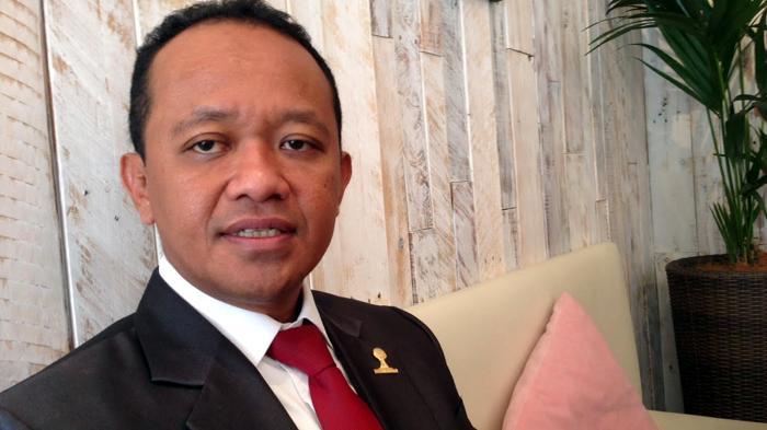 Bahlil Lahadalia, Ketua Umum Himpunan Pengusaha Muda Indonesia (Hipmi)