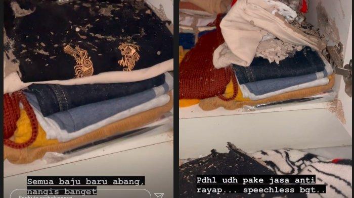 Unggahan Rachel Vennya yang menunjukkan baju-baju Xabiru dimakan rayap.